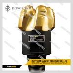PDC Oil Drill Bits