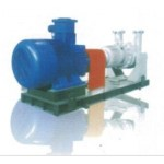 CAY No Shaft Permanent Magnetic Transmission Centrifugal Oil Pump