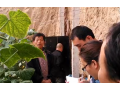 美国优马动力产品在陕西泾阳云阳镇黄瓜上的使用效果展示 (14play)