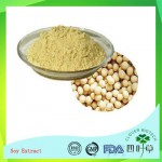 Soybean Extract/Soy